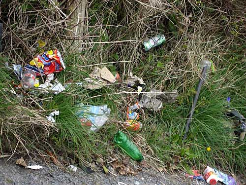 Litter on the Rocklow Road
